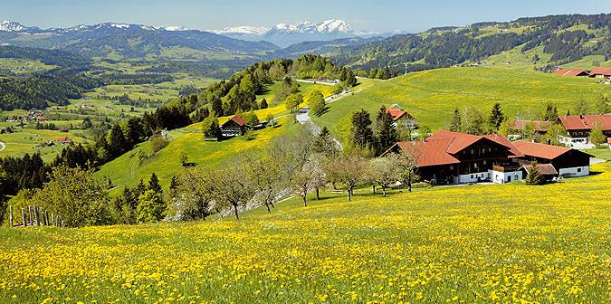 Hotel Berghof am Paradies Umgebung