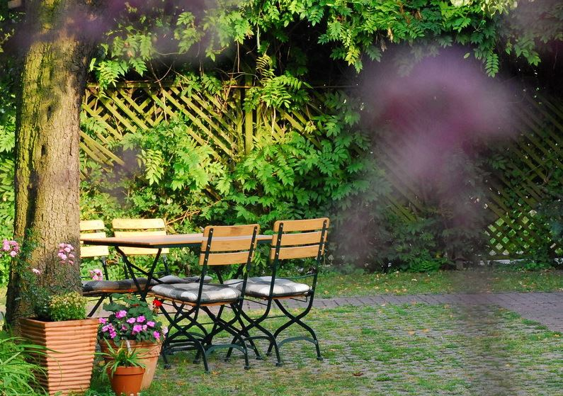 Birnbaum Garten