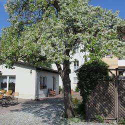 Pension zum Birnbaum