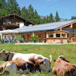 Alpengasthof Götschenalm