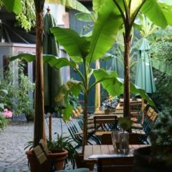 Winzerhof Garten