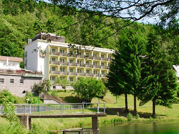 Hotel Schwarzbachtal Header